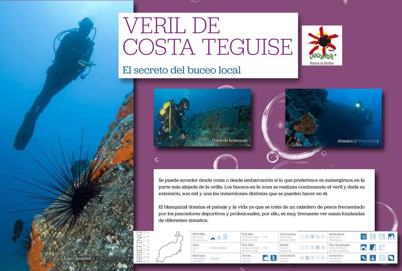 Veril de Costa Teguise
